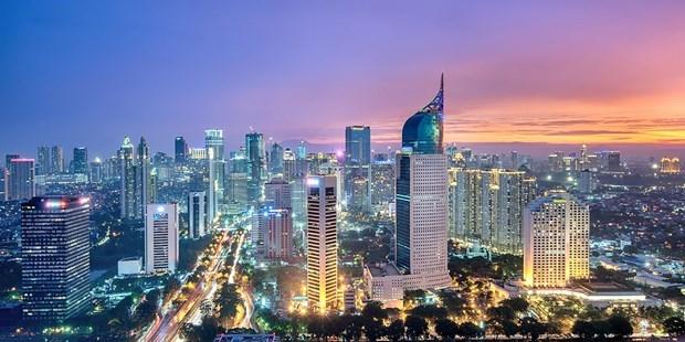 印尼决定将在2019年内确定首都新址 hinh anh 1