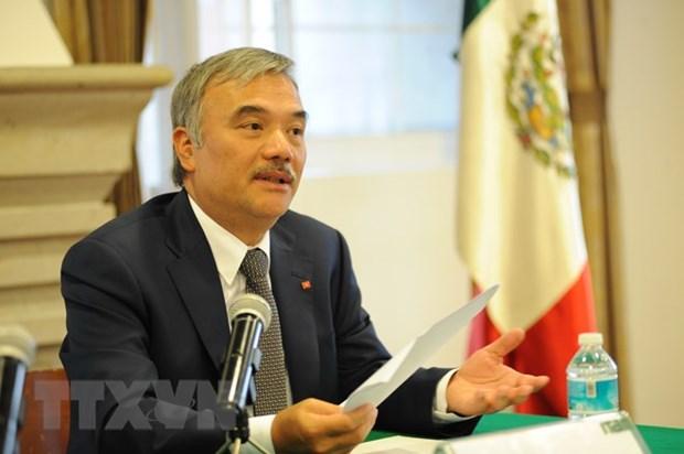 越南驻墨西哥大使阮怀阳:越墨关系全面蓬勃发展 hinh anh 1