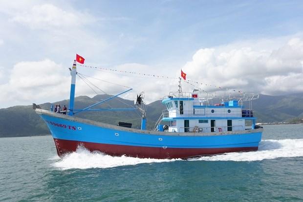 越南坚江省坚决不让未经登记渔船出海捕捞 hinh anh 1