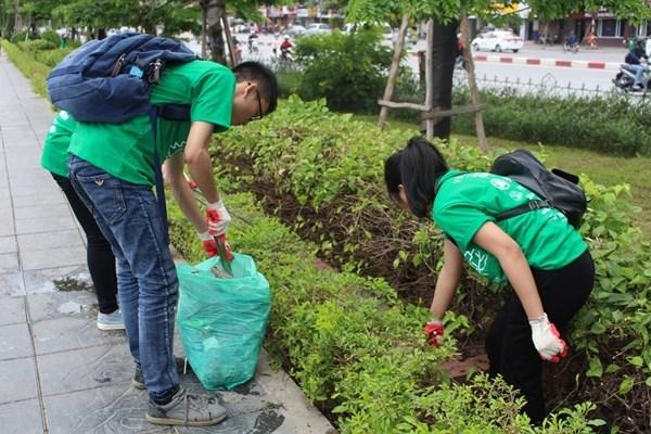 参加环境美化净化活动 提高对环保的意思 hinh anh 1