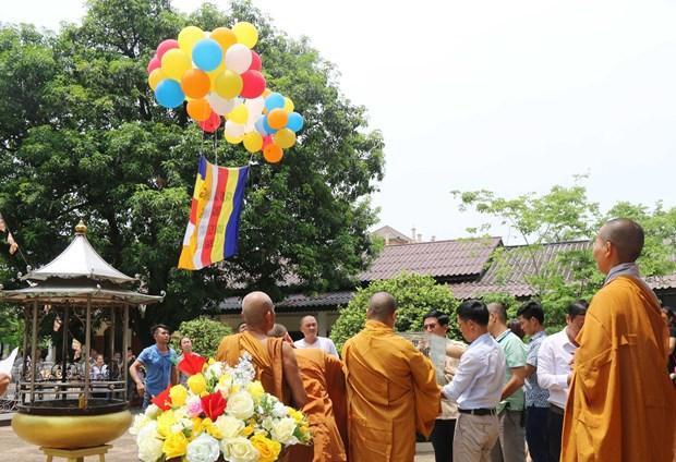 旅居老挝越南人举行佛历2563年佛诞大典 hinh anh 2