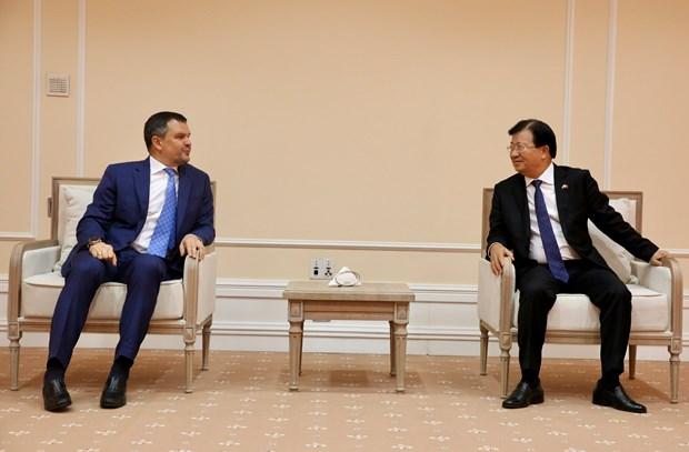 郑廷勇副总理:狠抓落实越南俄罗斯年和俄罗斯越南年活动 hinh anh 2
