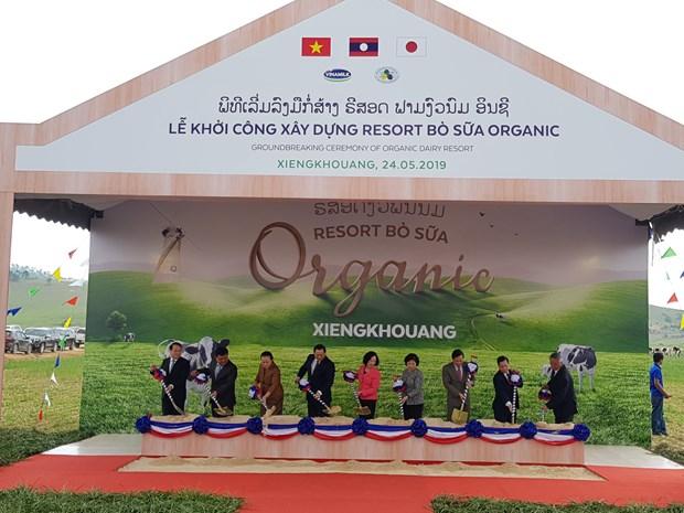 越老日三国推动高科技农业合作发展 hinh anh 1