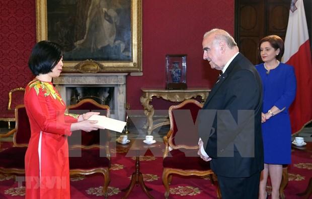 越南高度重视与马耳他的合作关系 hinh anh 1