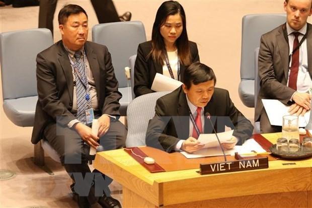 越南参加联合国安理会:维护所有国家的正当利益 hinh anh 1