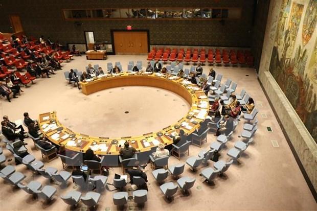 越南参加联合国安理会:维护所有国家的正当利益 hinh anh 2