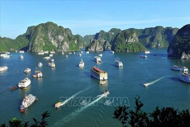 越南海洋与岛屿:海洋旅游在越南海洋战略中的地位 hinh anh 1