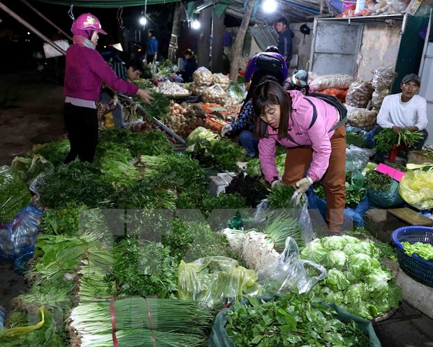 越南致力发展先进农产品供应中心体系 hinh anh 1