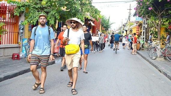 前5月越南接待外国游客量达近730万人次 hinh anh 1