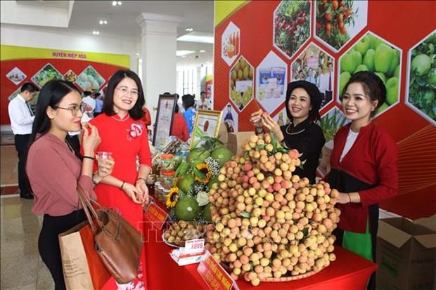 北江省举行荔枝生产和销售有关的经济论坛 hinh anh 2