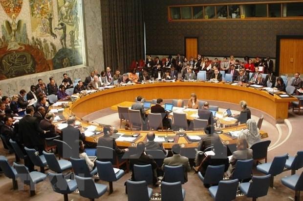 瑞典驻联合国大使:越南将在联合国安理会发挥建设性作用 hinh anh 1