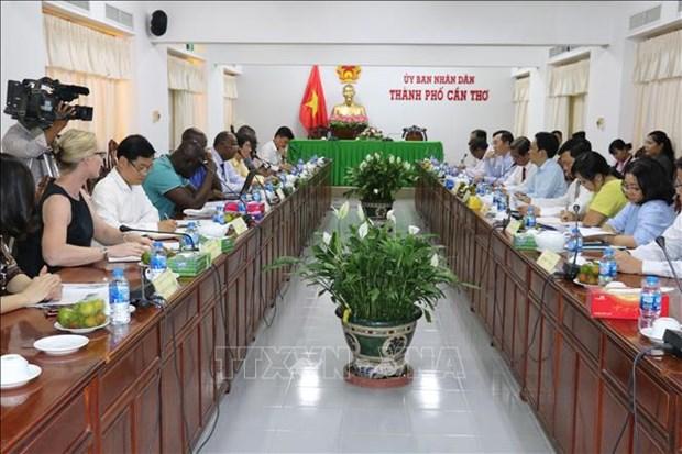 科特迪瓦共和国与芹苴市加强农业合作 hinh anh 1
