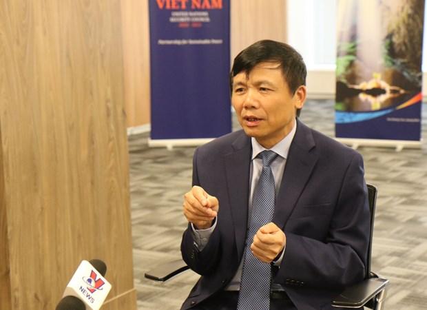 越南当选联合国安理会非常任理事国的机会很大 hinh anh 2