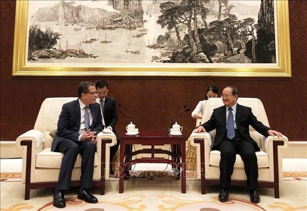 越南促进与中国西南地区的合作 hinh anh 2