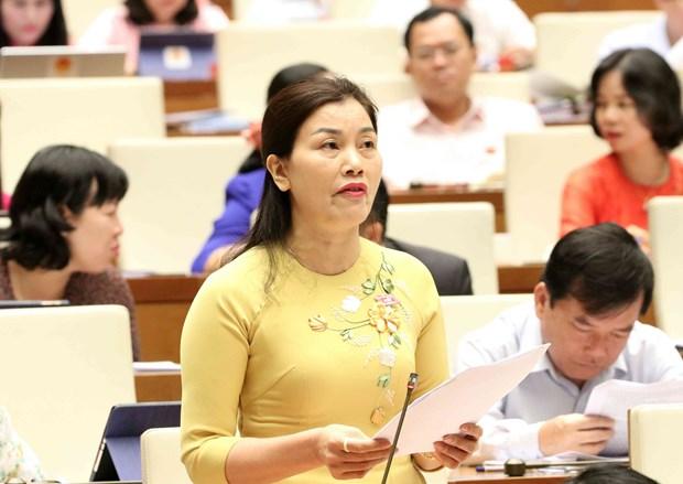 第十四届国会第七次会议:国会代表对安全秩序情况踊跃讨论 hinh anh 2
