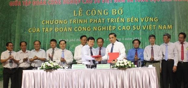 越南橡胶工业集团公布2019-2024年可持续发展计划 hinh anh 2