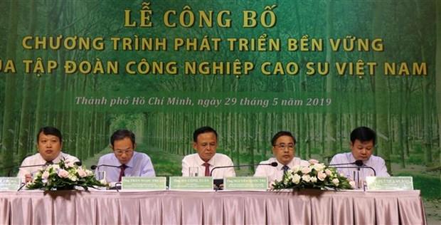越南橡胶工业集团公布2019-2024年可持续发展计划 hinh anh 1