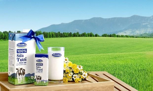 越南努力提升原料奶的供应量 hinh anh 1