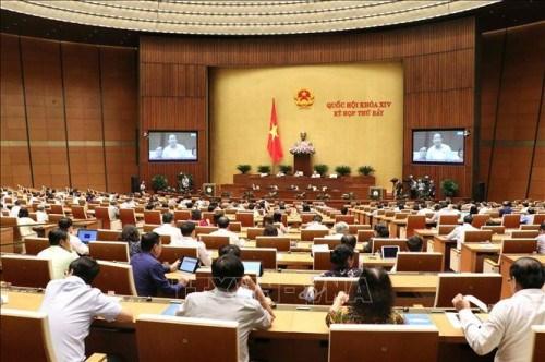 越南第十四届国会第七次会议重点开展质询和答复质询活动 hinh anh 1