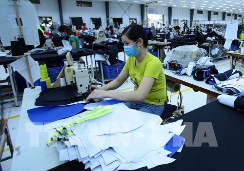 越南纺织服装集团在加拿大进行贸易促进活动 hinh anh 1