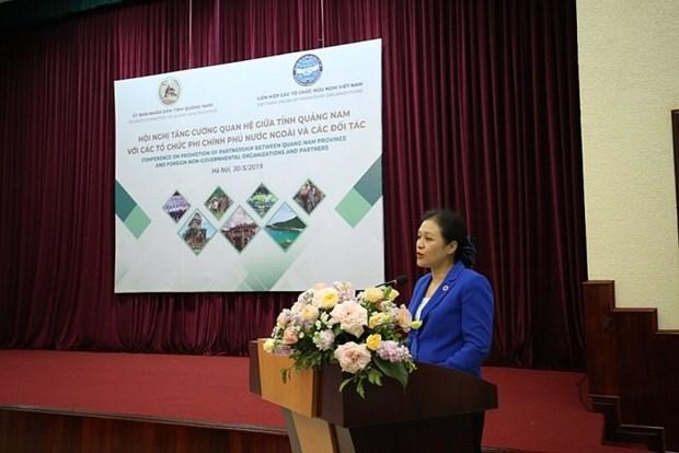 广南省主动加强与外国非政府组织的合作力度 hinh anh 2