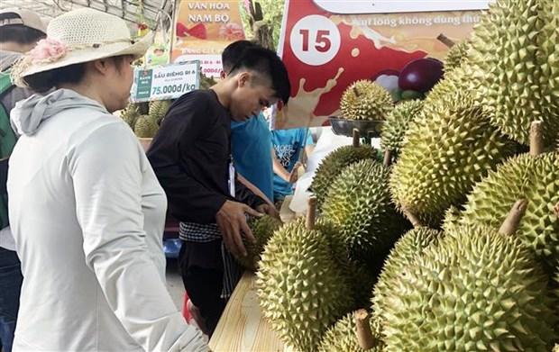 第15届南部水果节开幕 各精彩活动陆续举办 hinh anh 3