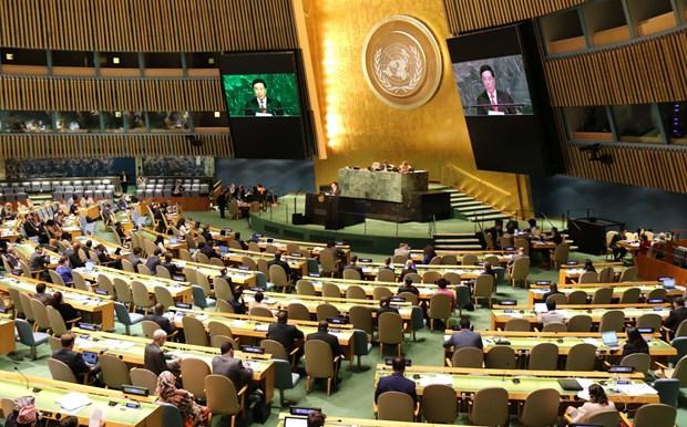 越南与联合国安理会:为世界和平与安全贡献力量 hinh anh 1