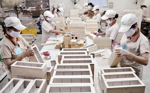 2019年前5月越南林产品出口增长近20% hinh anh 1