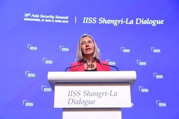 欧盟: 同越南签署FPA的时机已经成熟 hinh anh 1