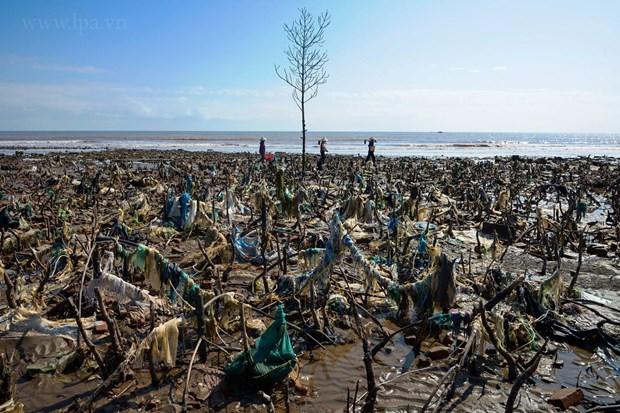 """""""拯救海洋"""" 塑料废弃物图片展在河内举行 hinh anh 3"""
