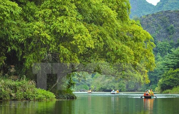 马来西亚媒体刊登有关越南旅游业崛起的文章 hinh anh 1