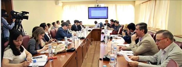 全球经济一体化背景下的俄越合作潜力 hinh anh 1