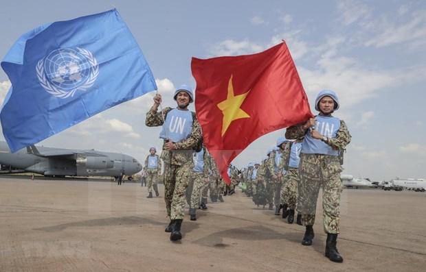 越南与联合国安理会:强化越南为世界和平贡献力量的承诺 hinh anh 1