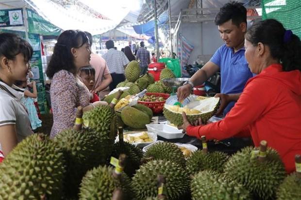 槟知省精品水果节:游客品尝当地特色水果的良好机会 hinh anh 2