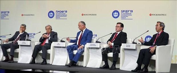 越共中央经济部部长阮文平出席圣彼得堡国际经济论坛 hinh anh 1
