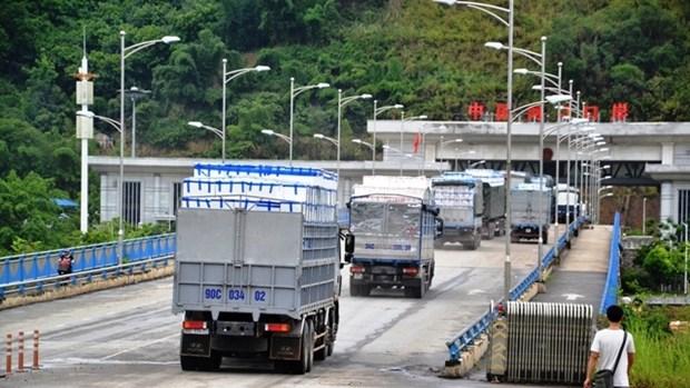 越南对中国出口1.1万多吨荔枝 hinh anh 1
