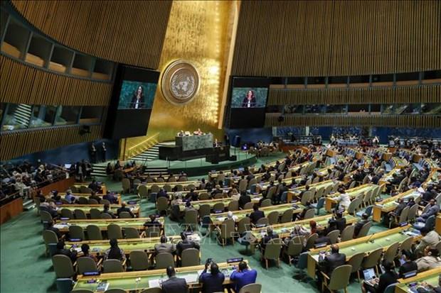 越南以高票当选联合国安理会非常任理事国 hinh anh 1