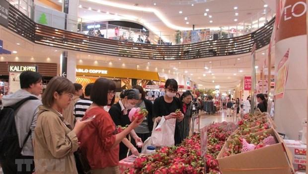 越南产品颇受日本消费者的欢迎 hinh anh 1