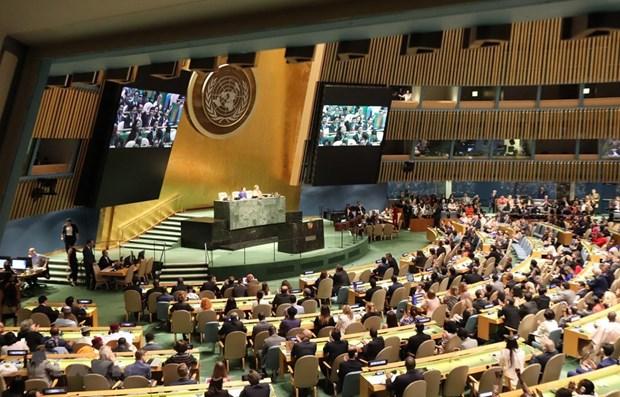 越南与联合国安理会:世界各国祝贺越南当选联合国安理会非常任理事国 hinh anh 1