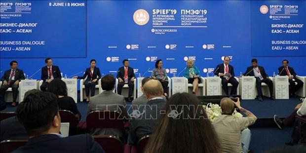 2019年圣彼得堡国际经济论坛:越南代表出席欧亚经济联盟与东盟工商对话 hinh anh 1