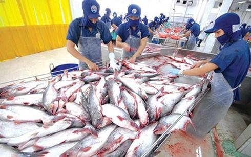 今年前5月越南水产品出口额同比下降 hinh anh 1