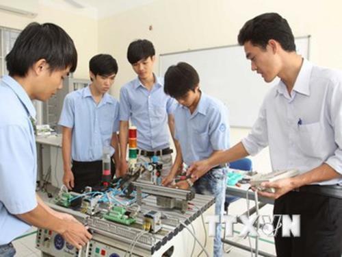 胡志明市对高素质劳动力需求增高 hinh anh 1