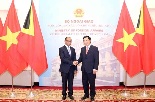 范平明外长同东帝汶外交与合作部部长举行会谈 hinh anh 1