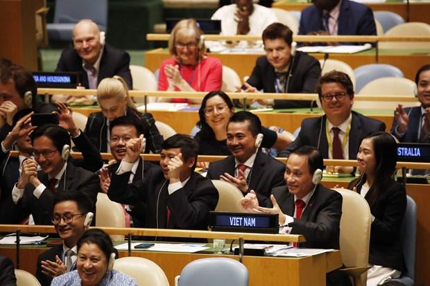 原越南驻联合国代表团团长阮芳娥:深信越南将顺利完成安理会交付的任务 hinh anh 2