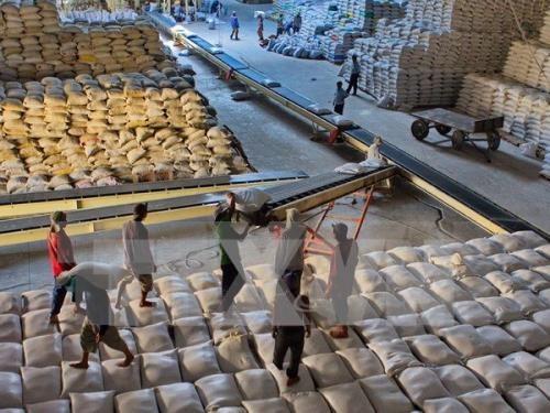 缅甸计划2019年内对中国出口总值为5亿美元的大米 hinh anh 1