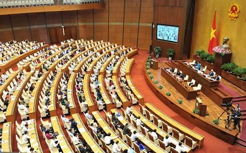 越南第十四届国会第七次会议讨论《劳动法(修正案)》 hinh anh 1
