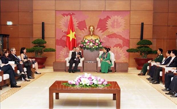 越南国会副主席丛氏放会见古巴国会代表团 hinh anh 1