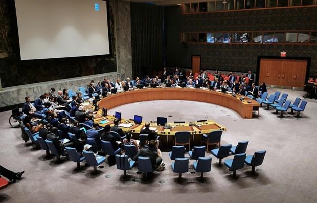 越南与联合国安理会:越南将在联合国安理会发挥作用 hinh anh 1