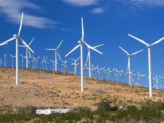 越南海上风力发电行业发展潜力巨大 hinh anh 1