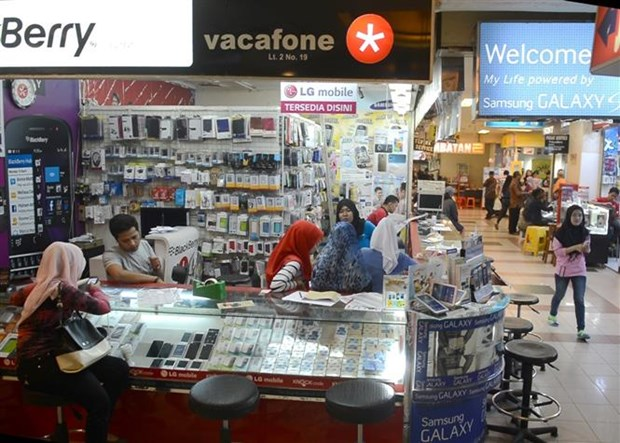 印尼将全力推动电子商务发展 hinh anh 2